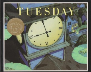 "Book Cover ""Tuesday"""